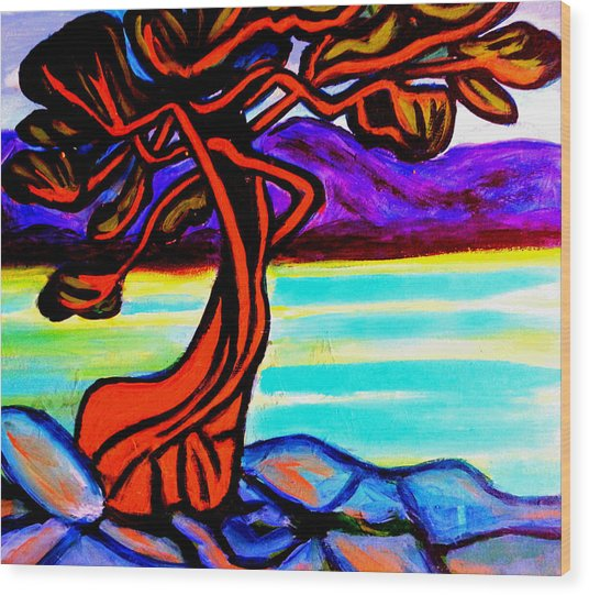 Arbutus Tree 1 Wood Print
