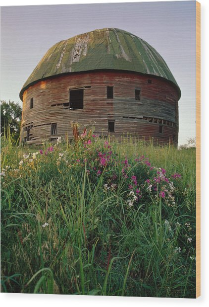 Arcadia Round Barn And Wildflowers Wood Print
