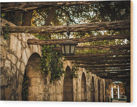 Arches At The Alamo Wood Print