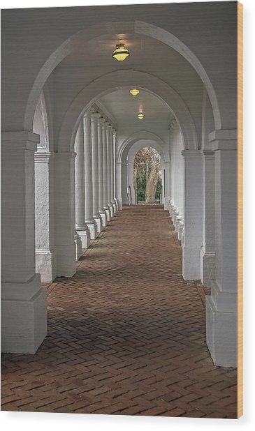 Arches At The Rotunda At University Of Va Wood Print