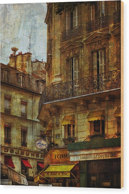 Architectural Detail Librairie Opera Paris Wood Print