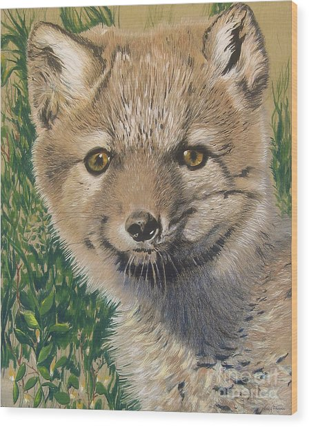 Sold Arctic Fox Wood Print