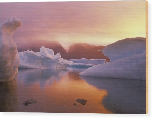 Arctic Splendour Wood Print by Ralph Brunner