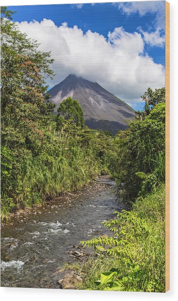 Arenal From The Rio Agua Caliente Wood Print