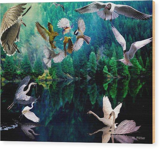 Ariel Squawkble Wood Print