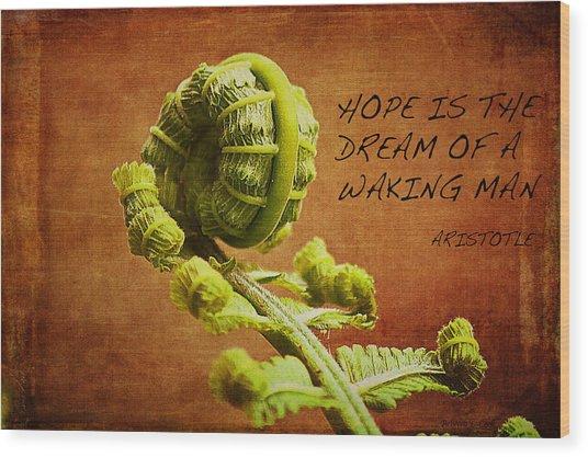 Aristotle Quote Wood Print