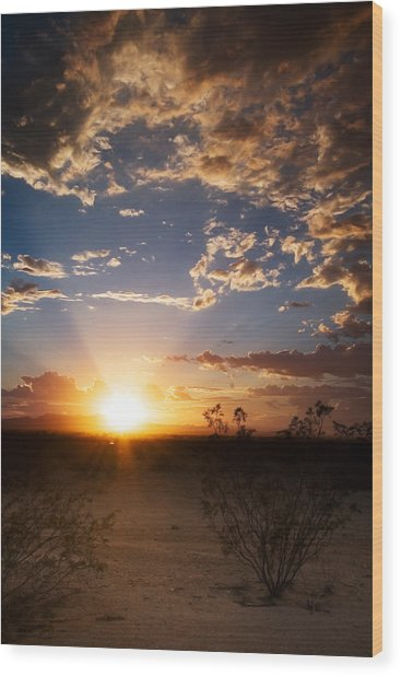 Arizona Desert Sunset Wood Print