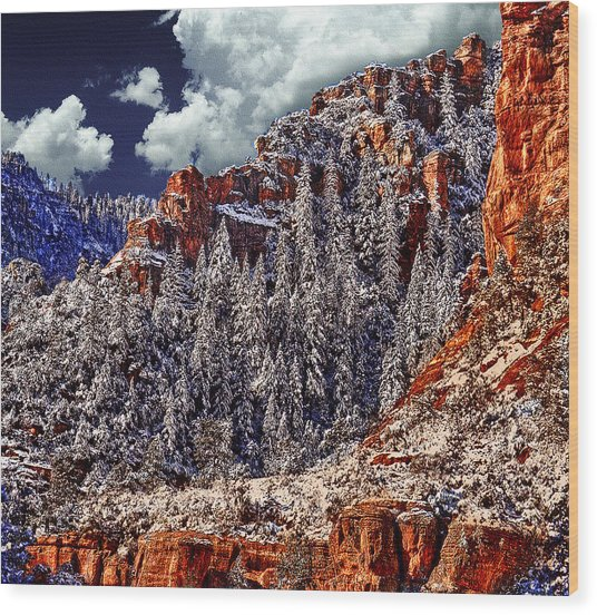 Arizona Secret Mountain Wilderness In Winter Wood Print
