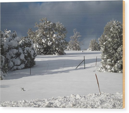 Arizona Snow 3 Wood Print