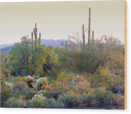 Arizona Spirit Wood Print