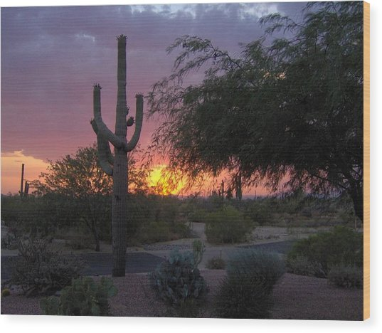 Arizona Sunset Wood Print by Catherine Swerediuk