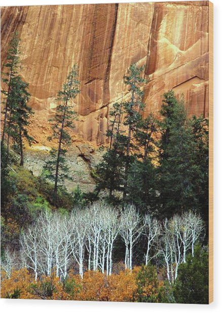 Arizona's Betatkin Aspens Wood Print
