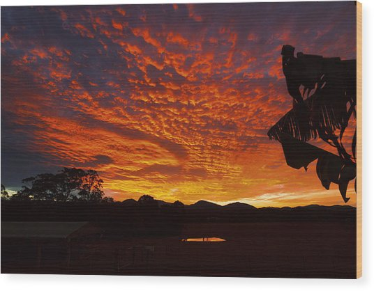 Armanisunset Wood Print