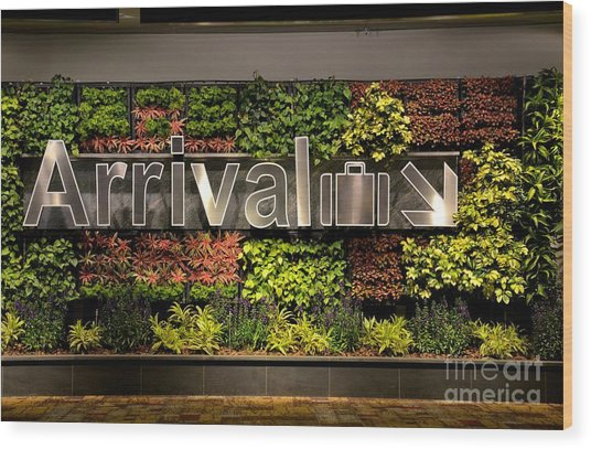 Arrival Sign Arrow And Flowers At Singapore Changi Airport Wood Print