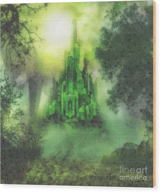 Arrival To Oz Wood Print