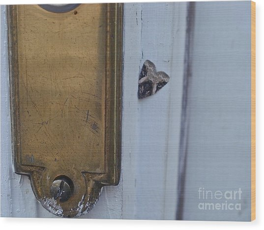Arrowhead Doorbell Moth Wood Print