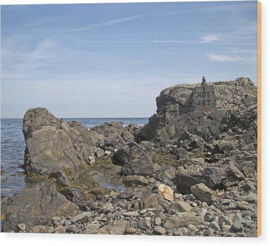 Art Rocks Wood Print