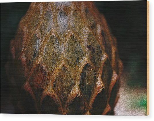 Artichoke Fountain Wood Print by Malgorzata Fairman
