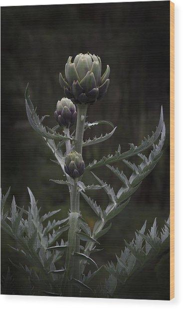 Wood Print featuring the photograph Artichoke by Jocelyn Friis