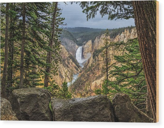 Artist Point Lower Falls   Wood Print