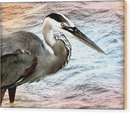 Artistic Great Blue Heron Wood Print