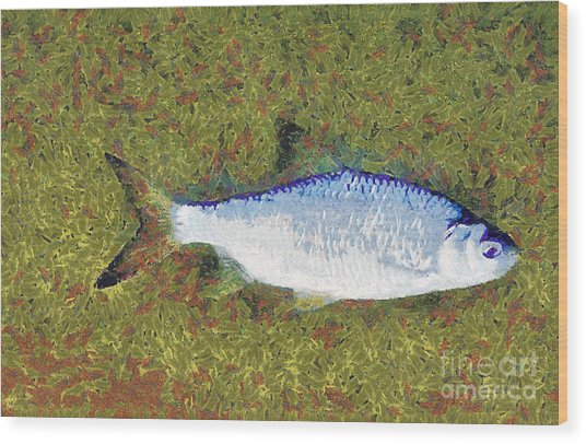 Artistically Painted Fish Wood Print by Odon Czintos