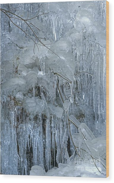 Artistry In Ice 9 Wood Print