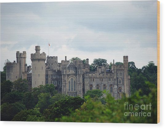 Arundel Castle Wood Print