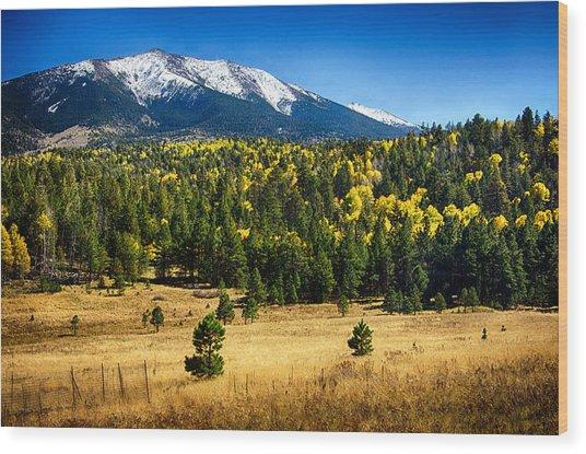 As Fall Arrives In Arizona  Wood Print