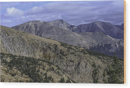As Far As The Eye Can See Wood Print by Tom Wilbert
