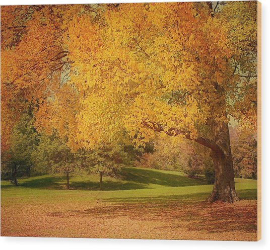 As The Leaves Fall Wood Print