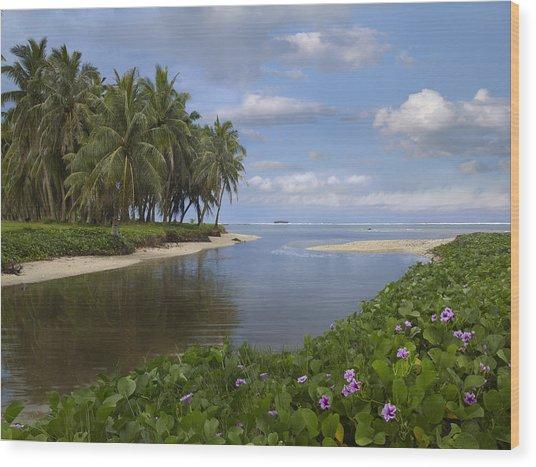 Asan Beach In Guam Wood Print