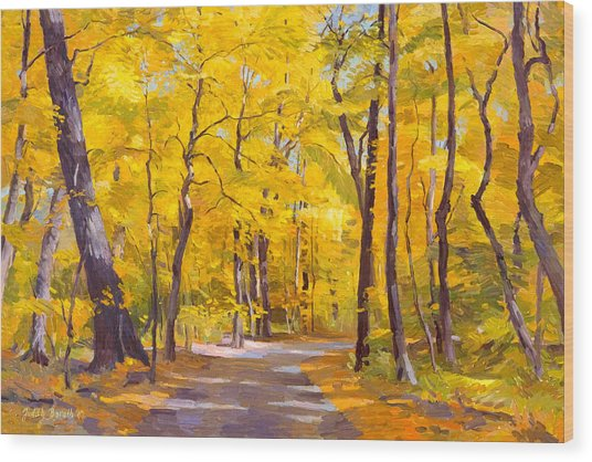 Ash Trees At Fall In The Morton Arboretum Wood Print