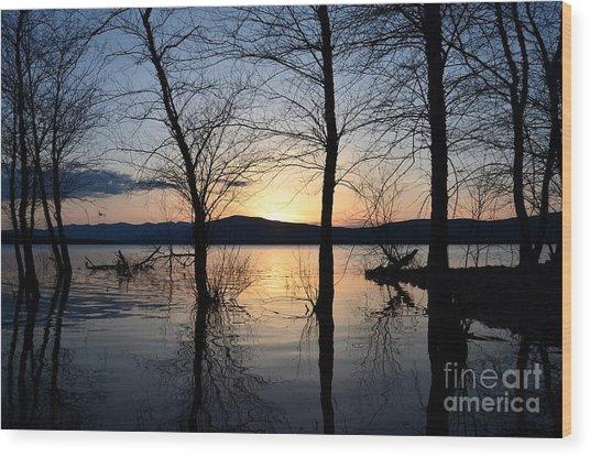 Ashokan Reservoir 43 Wood Print