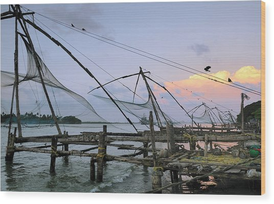 Asia, India, Kerala, Kochi (cochin Wood Print