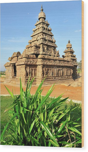 Asia, India, Tamil Nadu, Mahabalipuram Wood Print