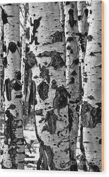 Wood Print featuring the photograph Aspen Art by Mae Wertz