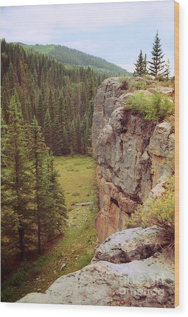 Aspen Cliff Wood Print