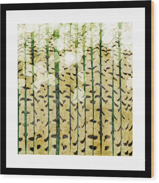 Aspen Colorado Abstract Square 3 Wood Print