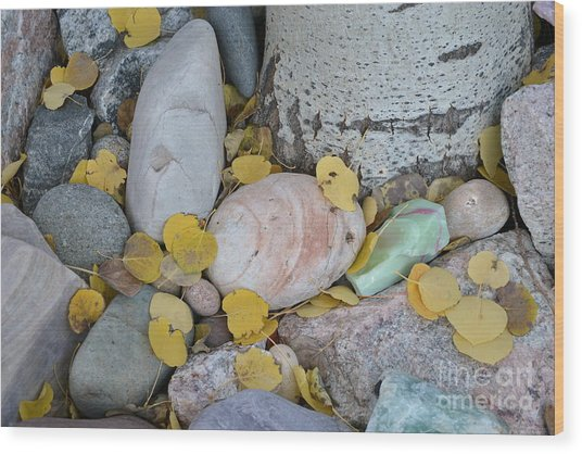 Aspen Leaves On The Rocks Wood Print