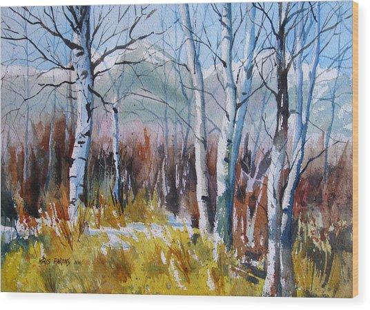 Aspen Thicket Wood Print
