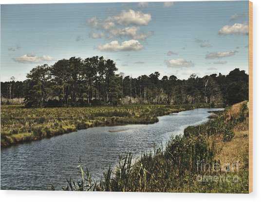Assateague Island - A Nature Preserve Wood Print