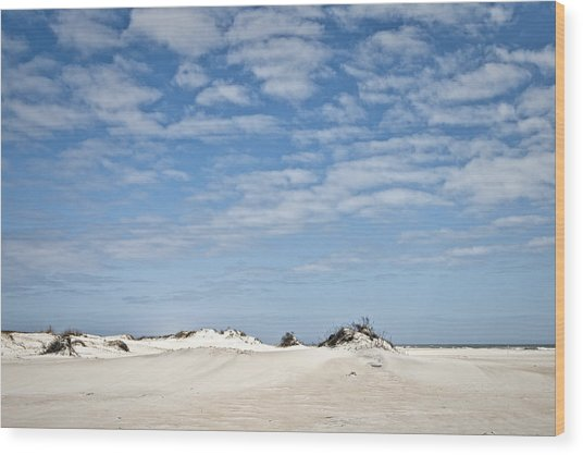Assateague National Park Dunes Wood Print