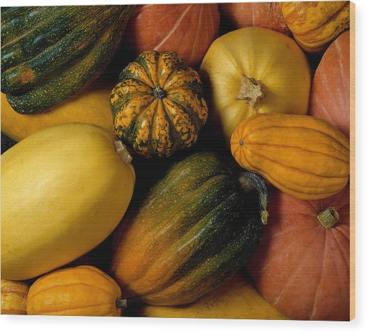 Assortment Of Squash Wood Print by Brand X Pictures