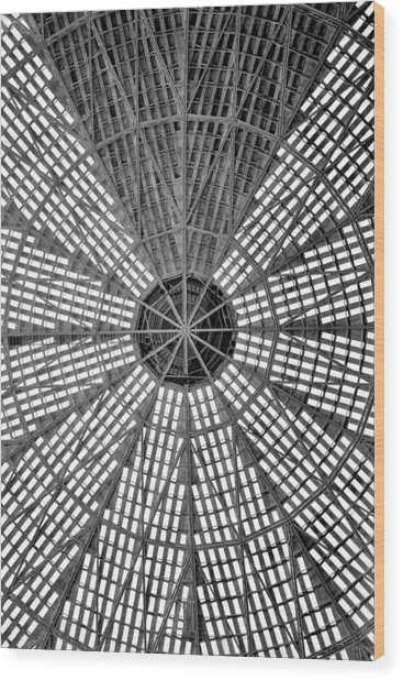 Astrodome Ceiling Wood Print