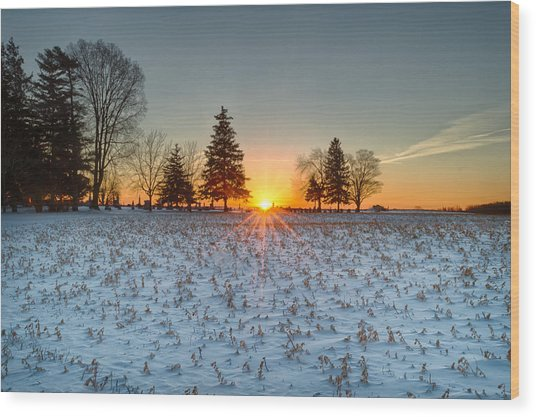 At First Light Wood Print