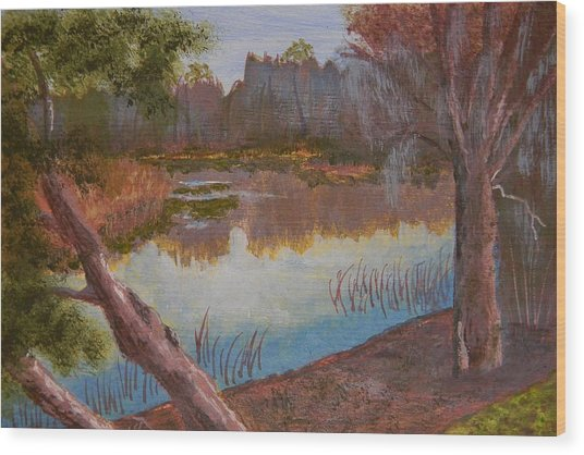 At The Bend On The Ocklawaha  Wood Print by Warren Thompson