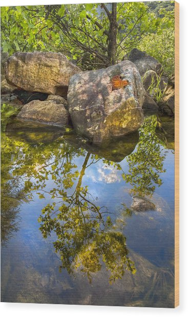 At The River Wood Print