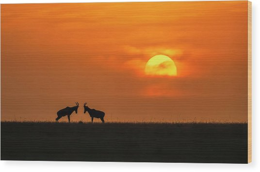 At The Sunset Wood Print by Jun Zuo