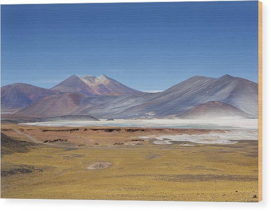 Atacama Hills Wood Print